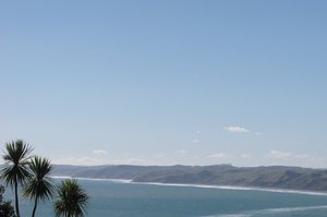 The two adults and two children were rescued from the rocks off Manu Bay in Raglan. Photo / File