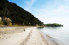 Waipiro Bay/Te Rau Puriri in the South Kaipara Peninsula is as remote as you can get. Photo / ARC