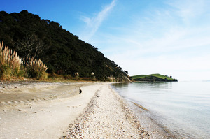 Waipiro Bay/Te Rau Puriri in the South Kaipara Peninsula is as remote as you can get. Photo / ARC