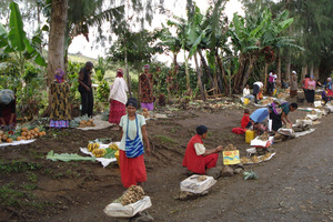 Villagers earn a small cash income from selling fresh produce on the main road near Tari, Hela Province Papua New Guinea. Photo / Catherine Wilson