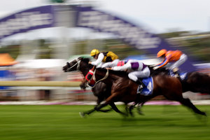 Knight's Tour ridden by James McDonald (behind) crosses the finish line. Photo / Sarah Ivey