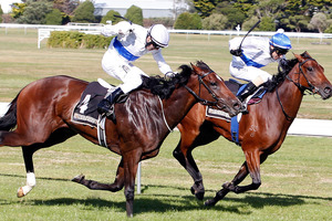 Artistic (inner), well ridden by Michael Coleman, holds off stablemate Zurella to win the Wellfield NZ Oaks at Trentham on Saturday.Picture / SNPA