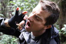 Bear Grylls is already plotting his comeback, just days after being axed from the show Man vs Wild. Photo / Supplied