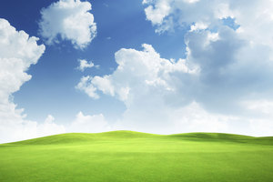 After years of being the coming thing, cloud computing has truly arrived.  Photo / Thinkstock