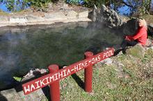 The rich mineral waters of Hinemoa's pool on Mokoia Island in Rotorua. Photo / Paul Rush
