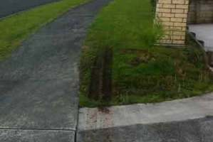 Tyre marks left on the lawn by delivery men. Photo / Supplied