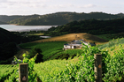 Destiny Bay, on Waiheke Island, is a small producer which feels threatened by bulk exports of New Zealand wine. Photo / Supplied