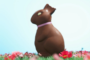 'It's not like the Easter Bunny wants to grab a raincoat and wander around the back gardens of houses planting eggs, does he?' The MetService brings good easter weather news. Photo / Thinkstock