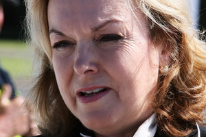 ACC minister Judith Collins. Photo / Glenn Taylor