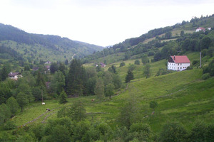 A typical landscape in the Massif de Vosges, France. Photo / Creative Commons image from Wikimedia