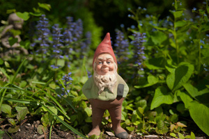 Students were caught making a daylight raid on garden gnomes in Oamaru. Photo / Thinkstock