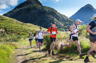 The Wild Turkey event through spectacular country in the Waitakere Ranges has been a favourite with many runners, some of whom have used its rugged climbs to train for the Coast to Coast. Photo / Shaun Collins