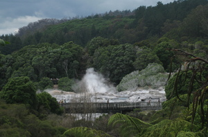 Te Puia's geysers send plumes of steam skyward. Photo / Eveline Harvey