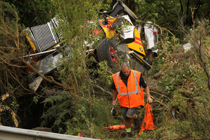 A 61-year-old truck driver from Te Awamutu died after his truck fell 20m down a bank. Photo / Alan Gibson