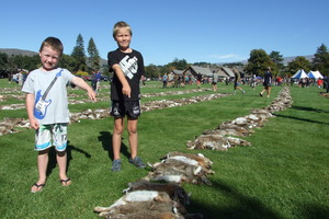 Finn Aitken (left) of Outram, and Jamie Hill of Alexandra, inspecting some of the 10,424 rabbits shot during the Great Easter Bunny Hunt in Central Otago over 24 hours. Photo / Lynda van Kempen