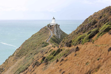 The walkway to the Catlins' Nugget Point lighthouse. Photo / Jill Worrall