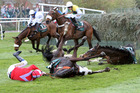 According to Pete ridden by Harry Haynes, left, died after falling at Becher's Brook at Aintree Racecourse.  Photo / AP