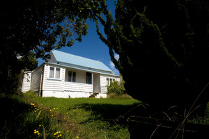 The 130-year-old cottage in Paget St, Freemans Bay. Photo / Dean Purcell