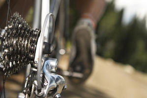 Take your bike out for a spin at one of these cycle trails. Photo / Thinkstock