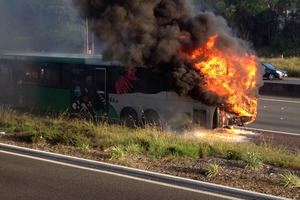 The Go Bus caught fire on Auckland's Northwestern motorway. Photo / Simon Nash