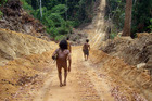 Members of the Awa Tribe in the Para province of the Brazilian Amazon Jungle walk along a path cleared by loggers. Photo / Supplied