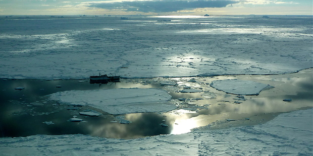 Few large intact marine ecosystems remain on Earth, the Ross Sea is least affected when it comes to human impacts. Photo / Supplied