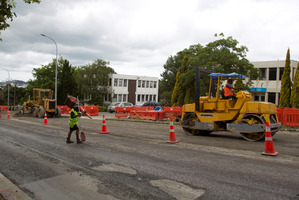 Road works can take a long time causing huge traffic delays especially on well-used roads. Photo / APN