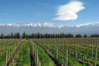 Argentina's Mendoza region spoils visitors with a wealth of viticultural and gastronomic delights. Photo / Thinkstock