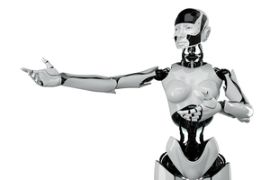 Sex-for-hire robots