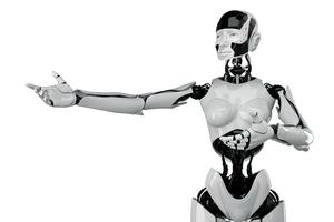 Sex-for-hire robots