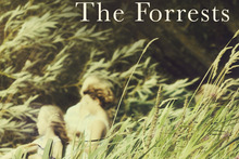 Book cover of The Forrests by Emily Perkins.