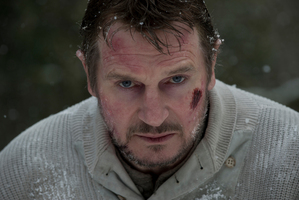 Liam Neeson in The Grey. Photo / Supplied