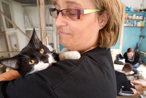 Ann Eade with one of the luckier cats being offered for adoption in the Lonely Miaow Adopt-a-thon. Photo / Steven McNicholl