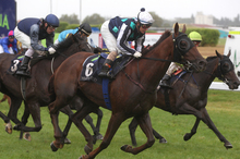 Old Drumble (No 6) will be a leading chance at Ruakaka today. Photo / APN 