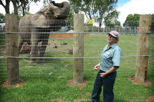 Franklin Zoo and Wildlife Sanctuary vet Helen Schofield with Mila. Photo / File