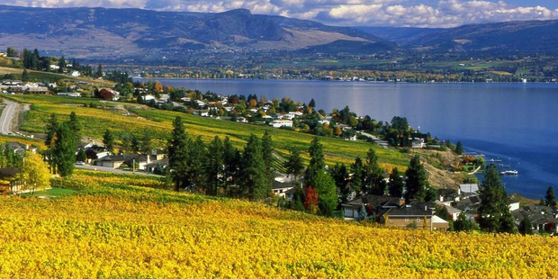 World-class food and wine with a view. Photo / Tourism British Columbia