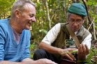 Charles Royal shows Grant Allen how to gather native plants for eating. Photo / Jason Burgess