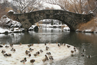 Winter Snow in Central Park, New York City. Photo / Thinkstock