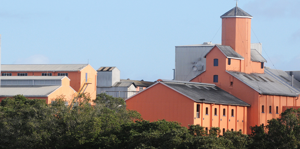 The coral pink buildings and tower of Birkenhead's Chelsea Sugar Refinery give it a Tuscan look. Photo / Supplied