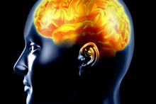 Psychopaths have structural differences in parts of the brain responsible for understanding emotions. Photo / Thinkstock