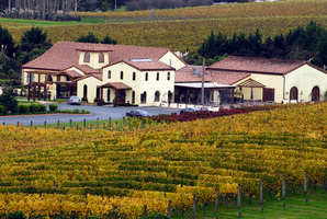 Ascension's core business is wine, but it has many other sources of income, including its restaurants.