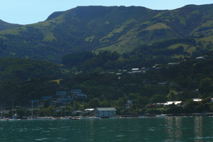 A view of Akaroa Harbour. Photo / Supplied