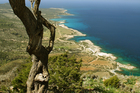 The Akamas Peninsula - a spectacular rugged outcrop on Cyprus' north-west coast - encompasses a host of small coves. Photo / Thinkstock