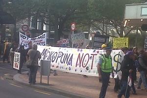 Protestors in Wellington today. Photo / Adam Bennett