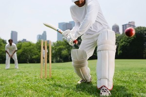 The lure of the T20 dollar has reduced great players' defensive techniques to tatters. Photo / Thinkstock