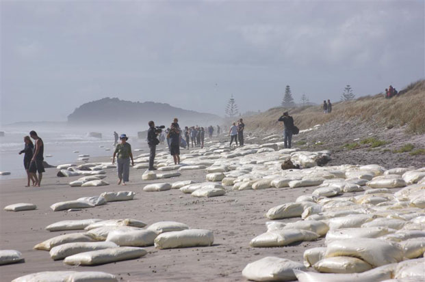Crowds gather to look at the containers and milk powder washed up at Waihi Beach from the Rena. Photo / Suzanne Colson
