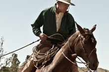 Buck Brannaman, wrangler of troubled horses - and people - is the subject of a brilliant doco. Photo / Supplied