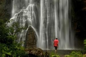 A lone spectator is dwarfed by  the impressive 58m Shine Falls near Tutira. Photo / Alan Gibson