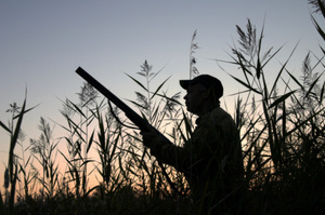 The duck shooting season has gotten off to a rocky start. Photo / Thinkstock