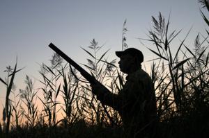 The duck shooting season has gotten off to a rocky start. Photo / Thinkstock